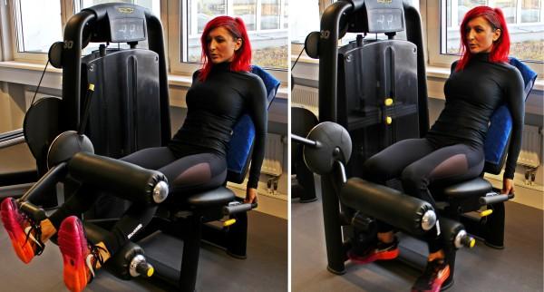 Όνομα: Seated-Leg-Curls.jpg Εμφανίσεις: 726 Μέγεθος: 69,7 KB