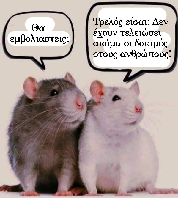 Όνομα: ποντίκια.jpg Εμφανίσεις: 115 Μέγεθος: 177,0 KB