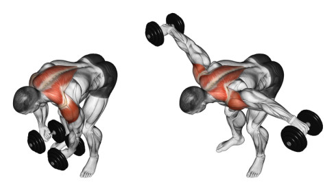 shoulders bent over side raises 490x278